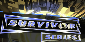Logo for WWE Survivor Series 2005